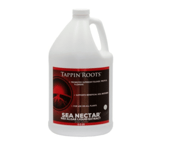 One gallon bottle of Tappin' Roots Sea Nectar